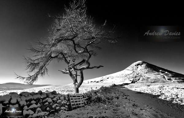 roseberry topping north yorkshire snow black white