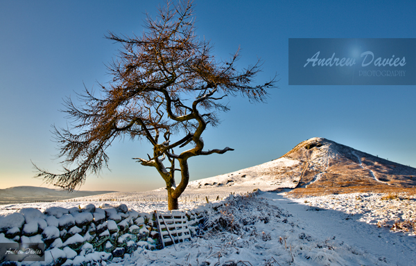 roseberry topping north yorkshire snow