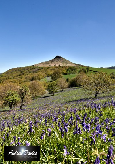 roseberry topping north yorkshire