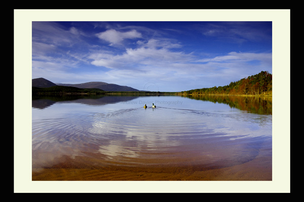 loch morlich scottish highlands