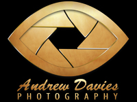 north east wedding photographer andrew davies